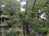 sf_japanese_gardens